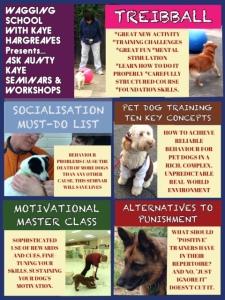 DOGS seminar poster